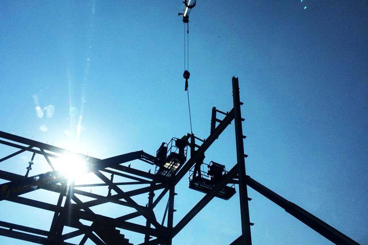 Crane 09